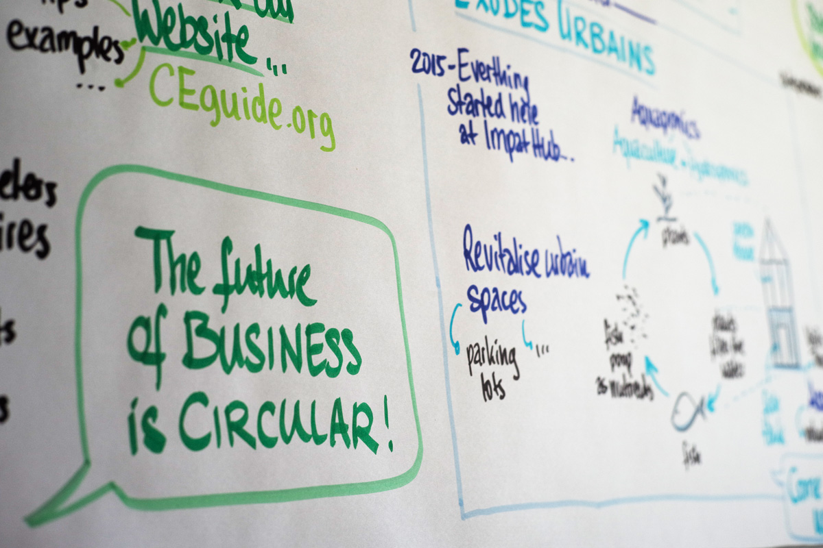 Detail of graphic recording at the 'Cicular Economy Initiative Launch Event'